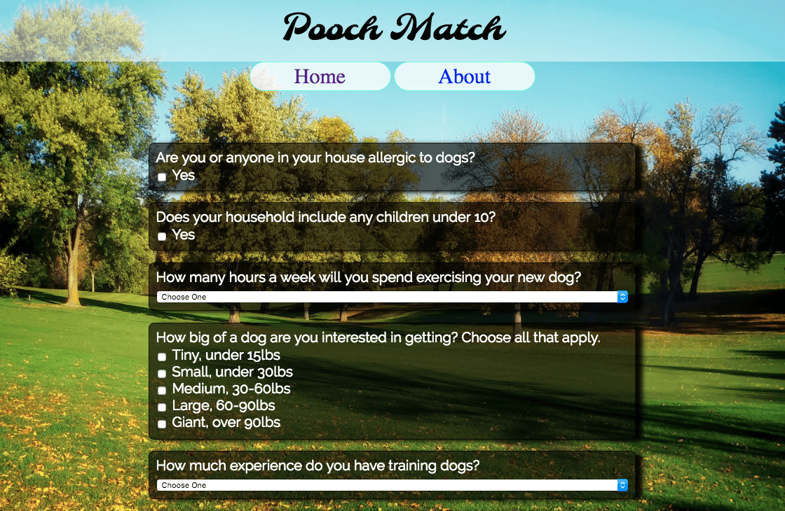 Pooch Match