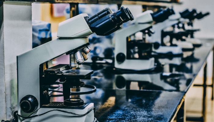 microscopes on a laboratory bench