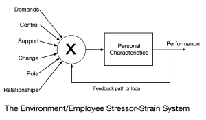Stressor-Strain-System-Featured Image
