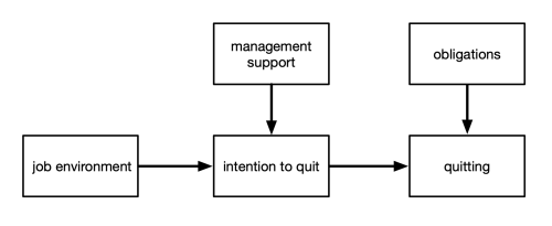 Model linking environment to intention to quit
