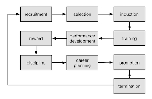 Organisational Development Cycle