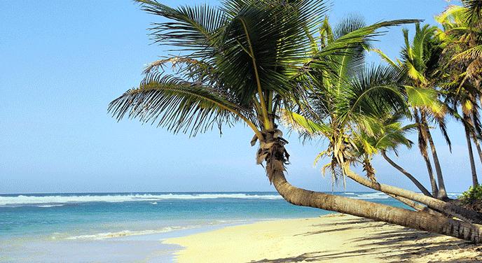 Warum Kuba? staticContent:seoTemplage.image