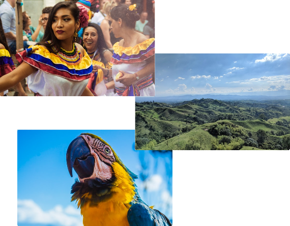 Warum Kolumbien? Bild