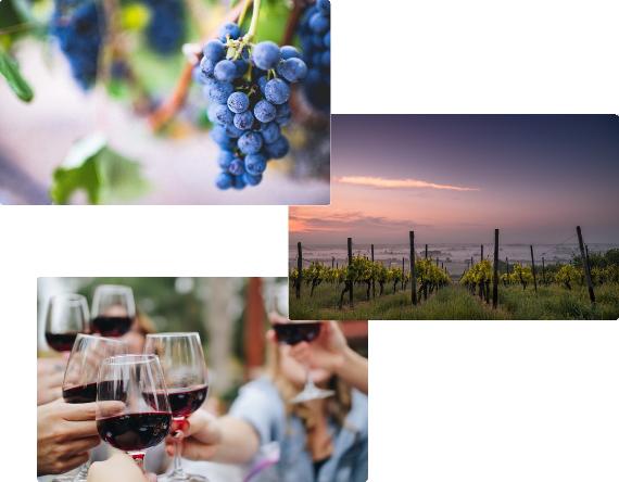 Warum Bordeaux? staticContent:seoTemplage.image