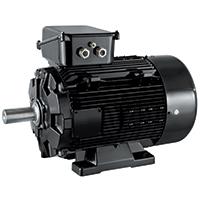 Dyneo Plus LSHRM moottori Leroy-Somer