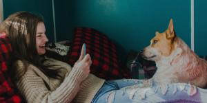Livres audio, animaux et nous : une histoire d'amour