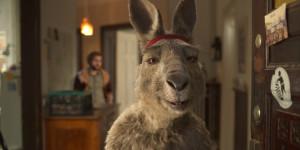 Känguru und ich: Das Teutelbier im Interview