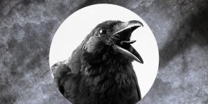 """Schöner Schaudern: Die """"Gothic Novel"""""""