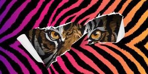 """""""Tiger King"""" und andere unglaubliche Storys"""