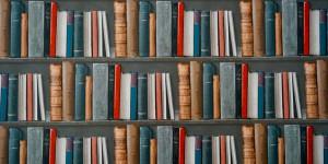 Un Perché al giorno: il romanzo