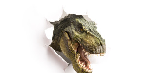 Dinosaurier - Rockstars unter den Fossilien