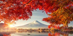 Vom japanischen Traum
