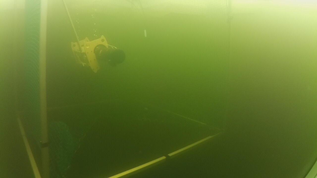 The AUV REMUS deployed under ice