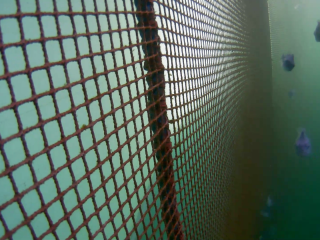 Close look at the net in fish pen