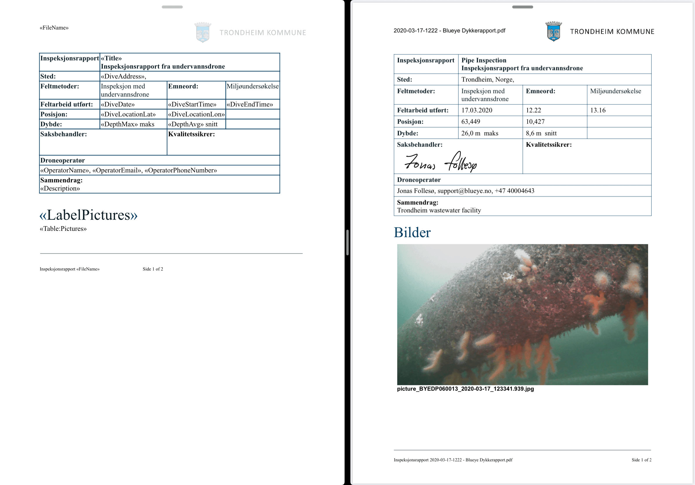 Example of a custom template on the left, and the generated report on the right. This is not a real template or report and only created for testing purposes.