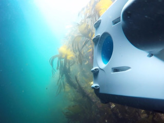 PioneerOne exploring the kelp forrest at Hitra Islands