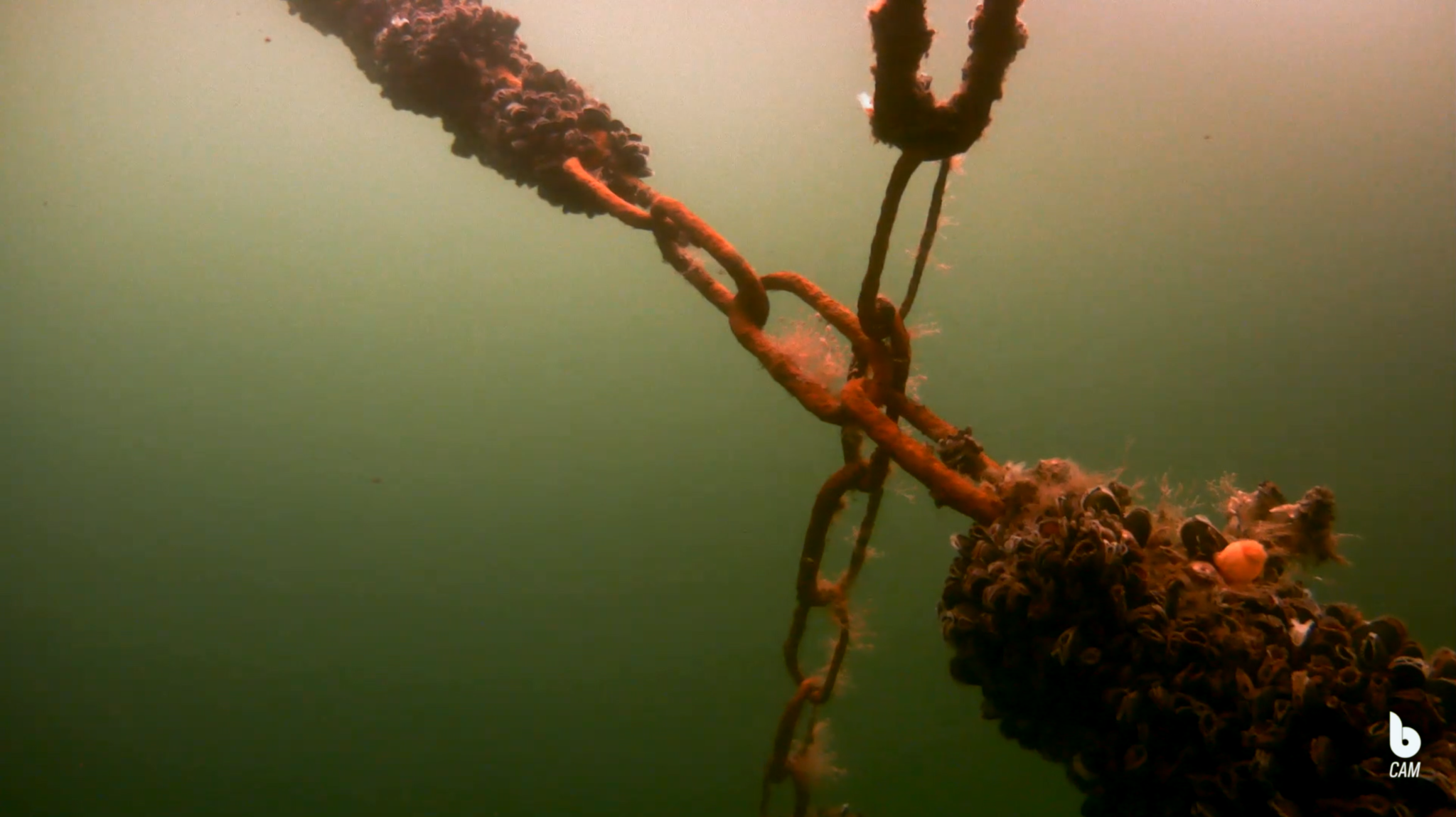 Underwater drone footage
