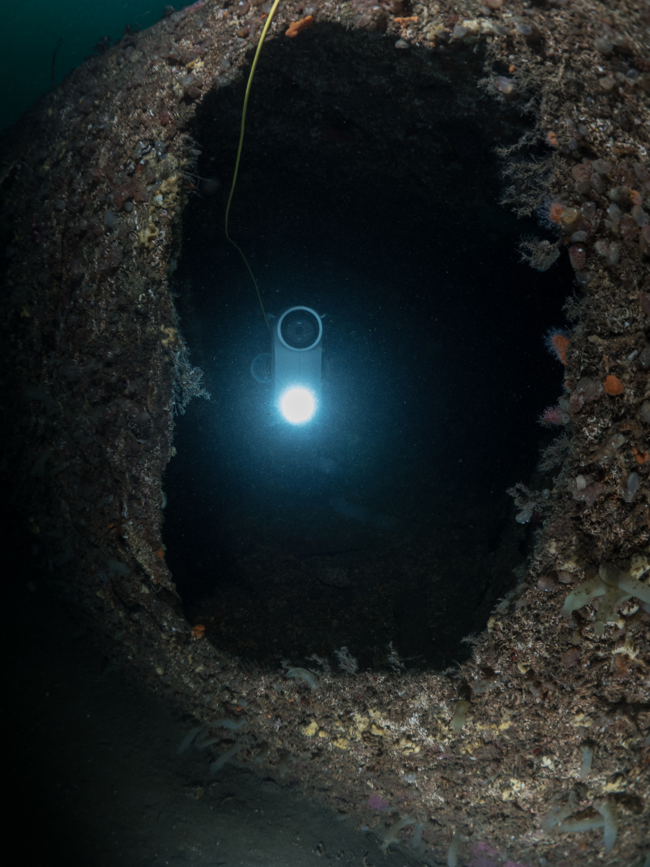 Blueye Pioneer exploring the inside of a shipwreck