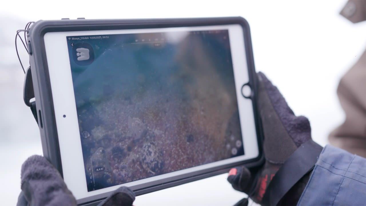 En UiT student ser på undervannsbilder fra en Blueye drone på en ipad