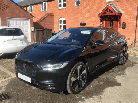 Jaguar at home