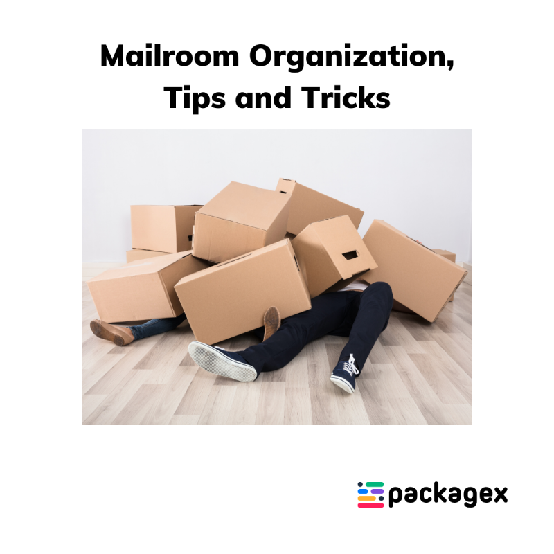 Mailroom-organization-PackageX-blog-post.png