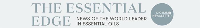 ESSENTIAL EDGE Quarterly Newsletter