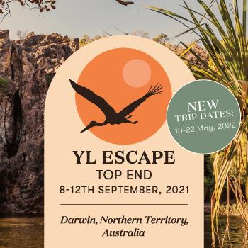 YL Escape Top End