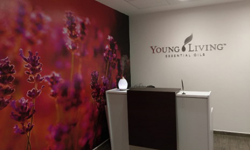 Young Living Mexico