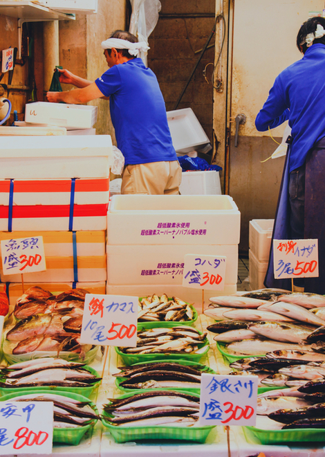Discover Japanese eating culture in the Tsukiji seafood market