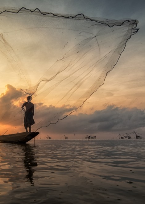 Watch traditional net fishing along the backwaters of Kerala