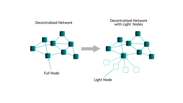 Light Node vs Fullnode