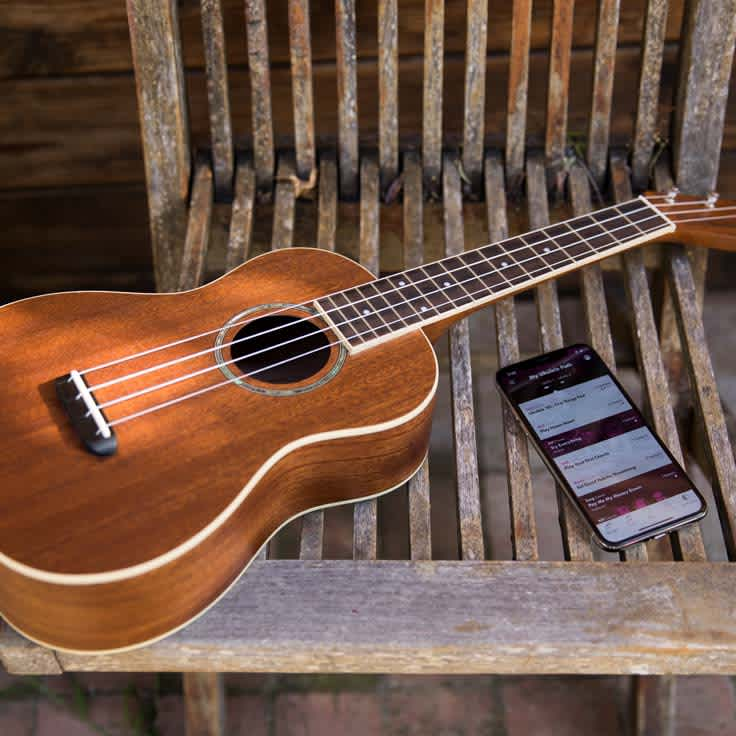 7 Reasons You Should Play the Ukulele