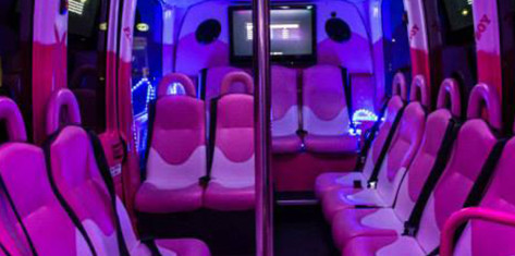 Small Party Bus (up to 16 ppl.)