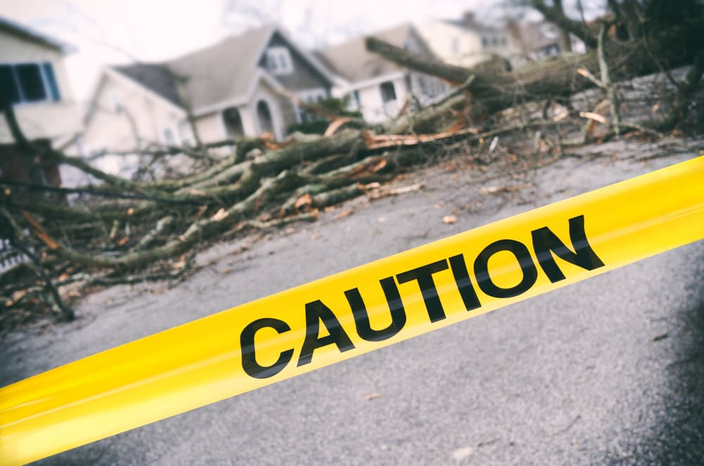 Business insurance for natural disasters