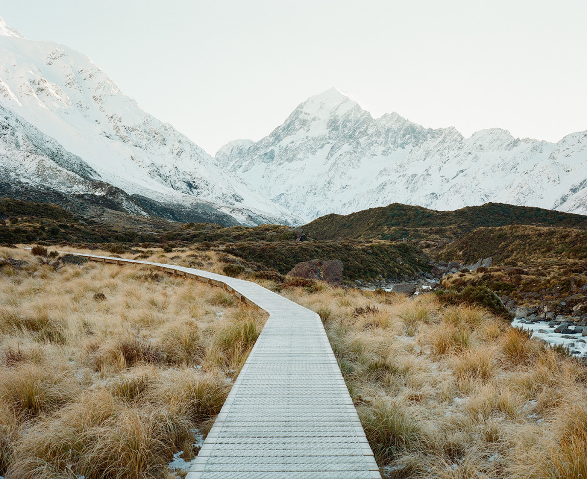 New Zealand's Serene Natural Terrain, on Medium Format Film