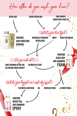 Pantene dry shampoo foam or spray DecisionChart FINAL