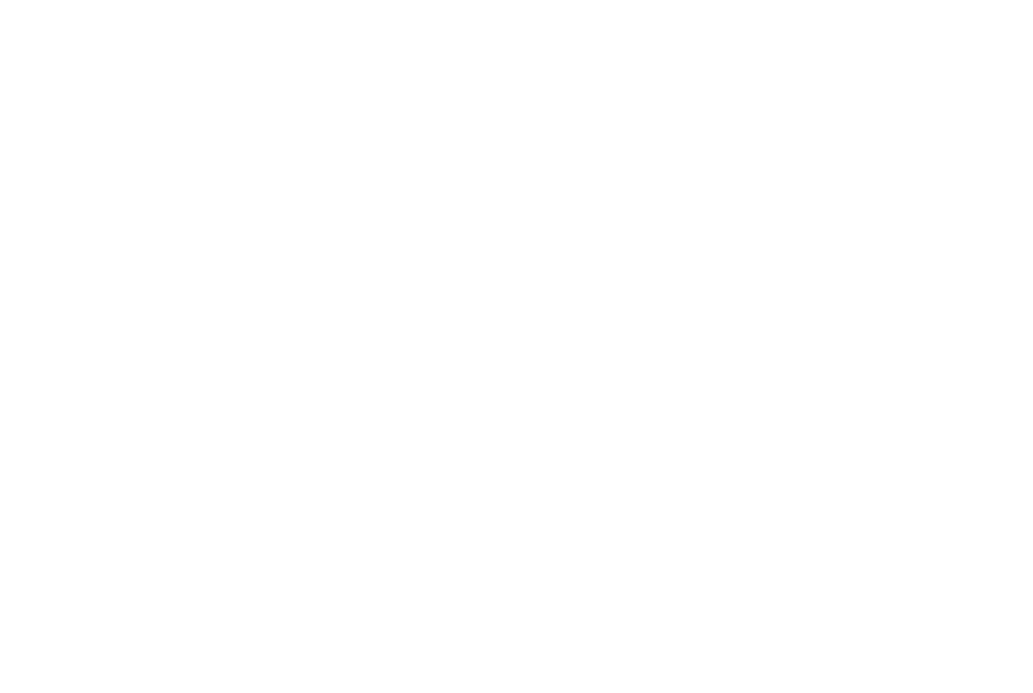 logo - Bellmont Securities (white)