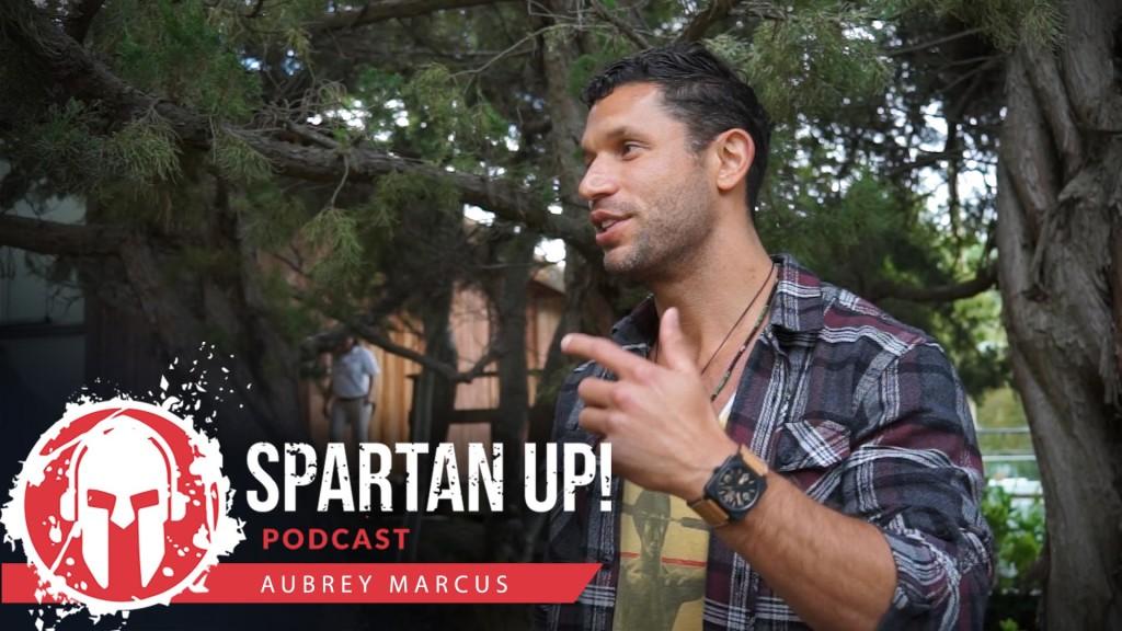 161: Aubrey Marcus | Bring Hindsight to Foresight