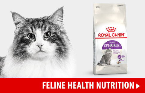Nourriture Royal Canin Health Nutrition pour chat >
