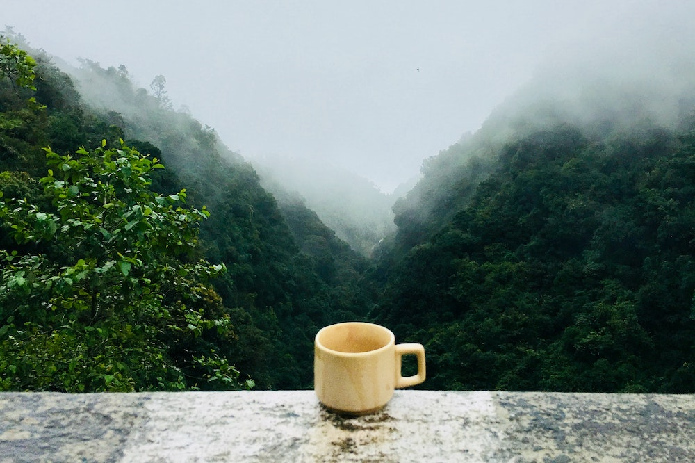 High altitude coffee cup