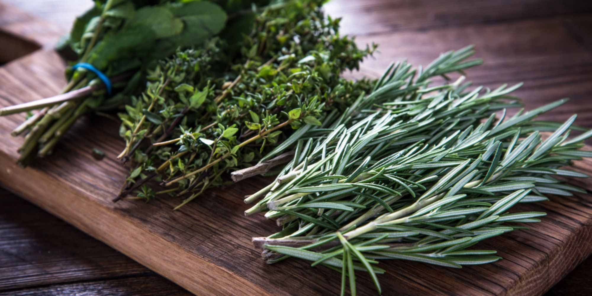 Bushels of rosemary, thyme, and basil on a wooden cutting board.