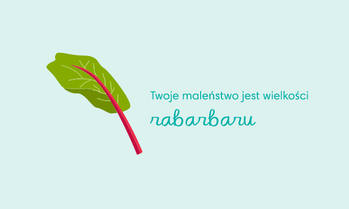 baby size of rhubarb week 38