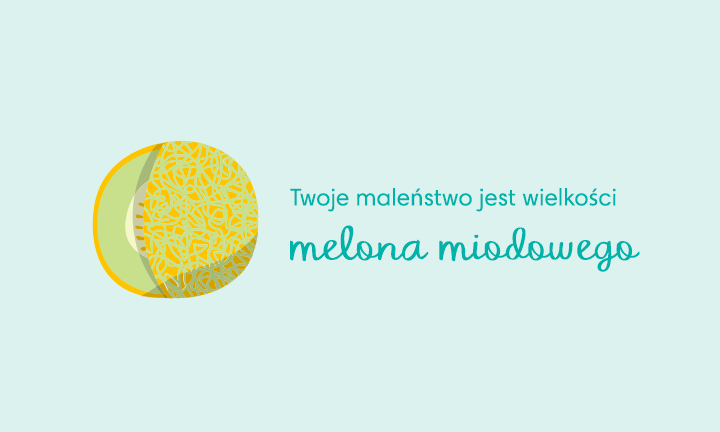 baby size of honeydew melon week 35