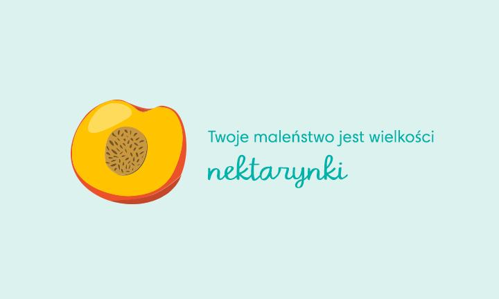 baby size of nectarine week 14