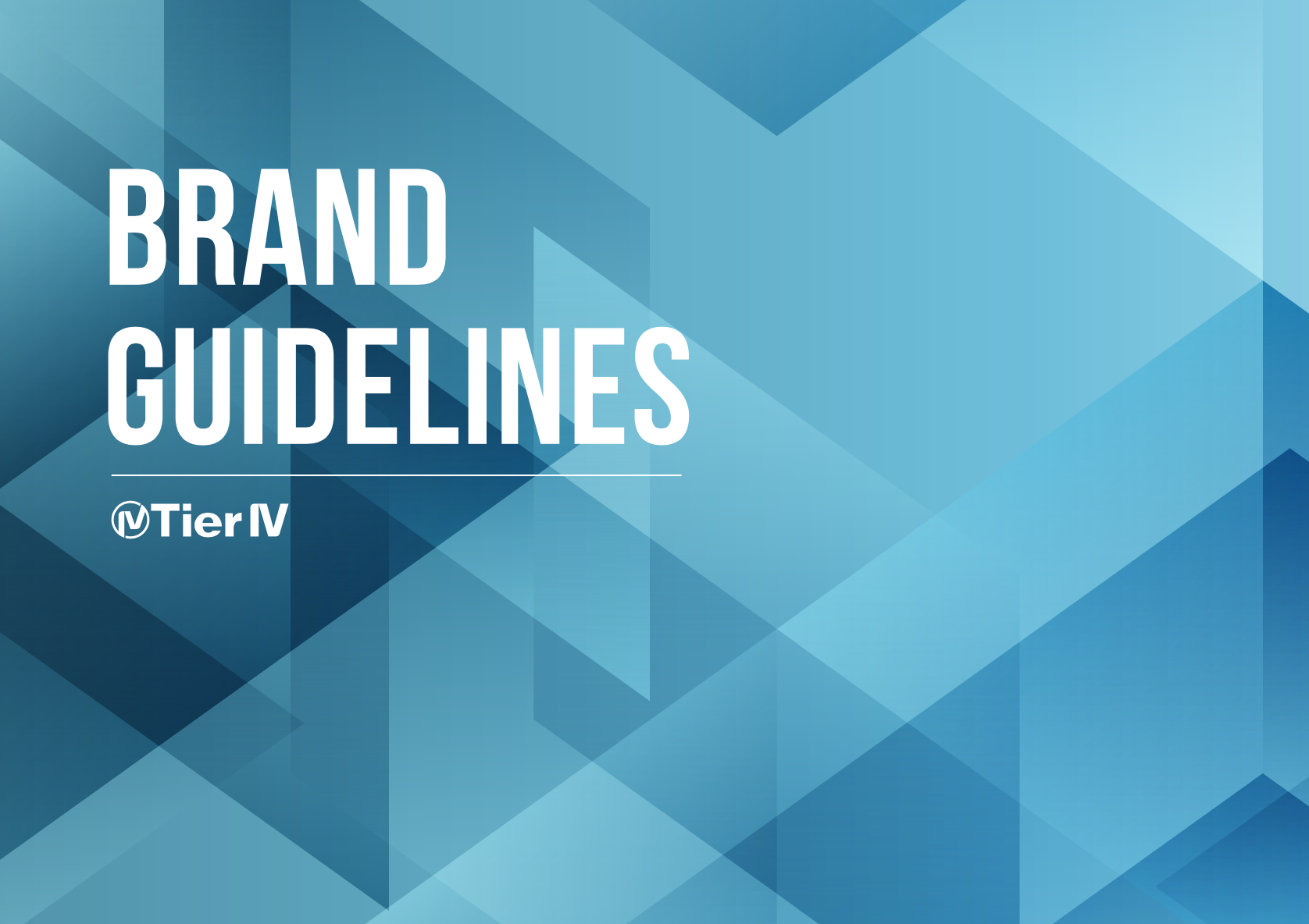 Tier IV Brand Guidelines