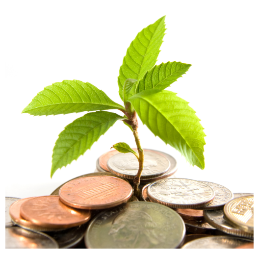 Investment Plant Image