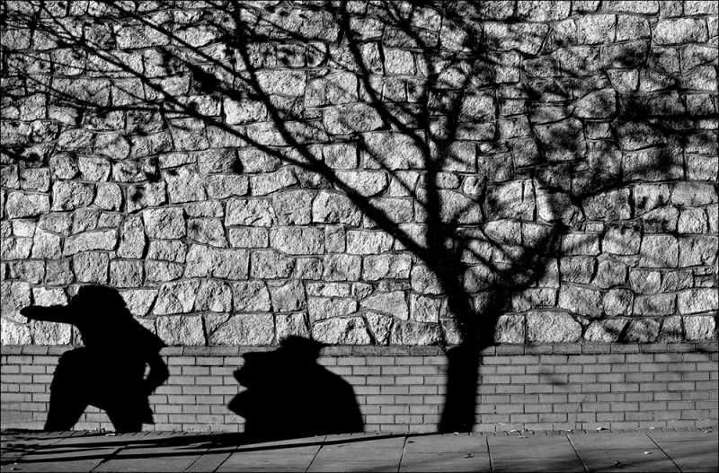 D263 - Dublin Shadows.