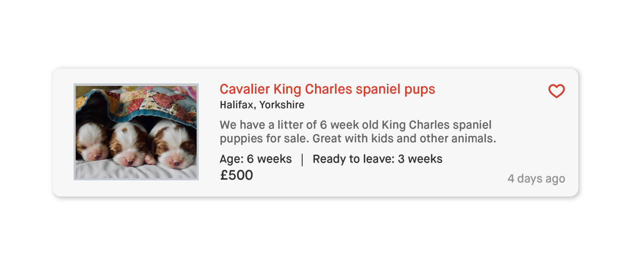 An add with three puppies being sold cheaply