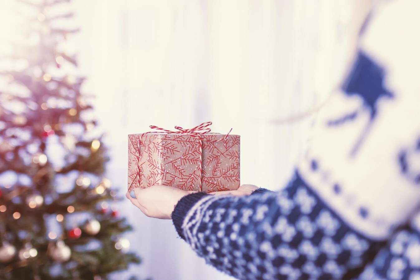 Someone holding a wrapped gift in front of a Christmas tree