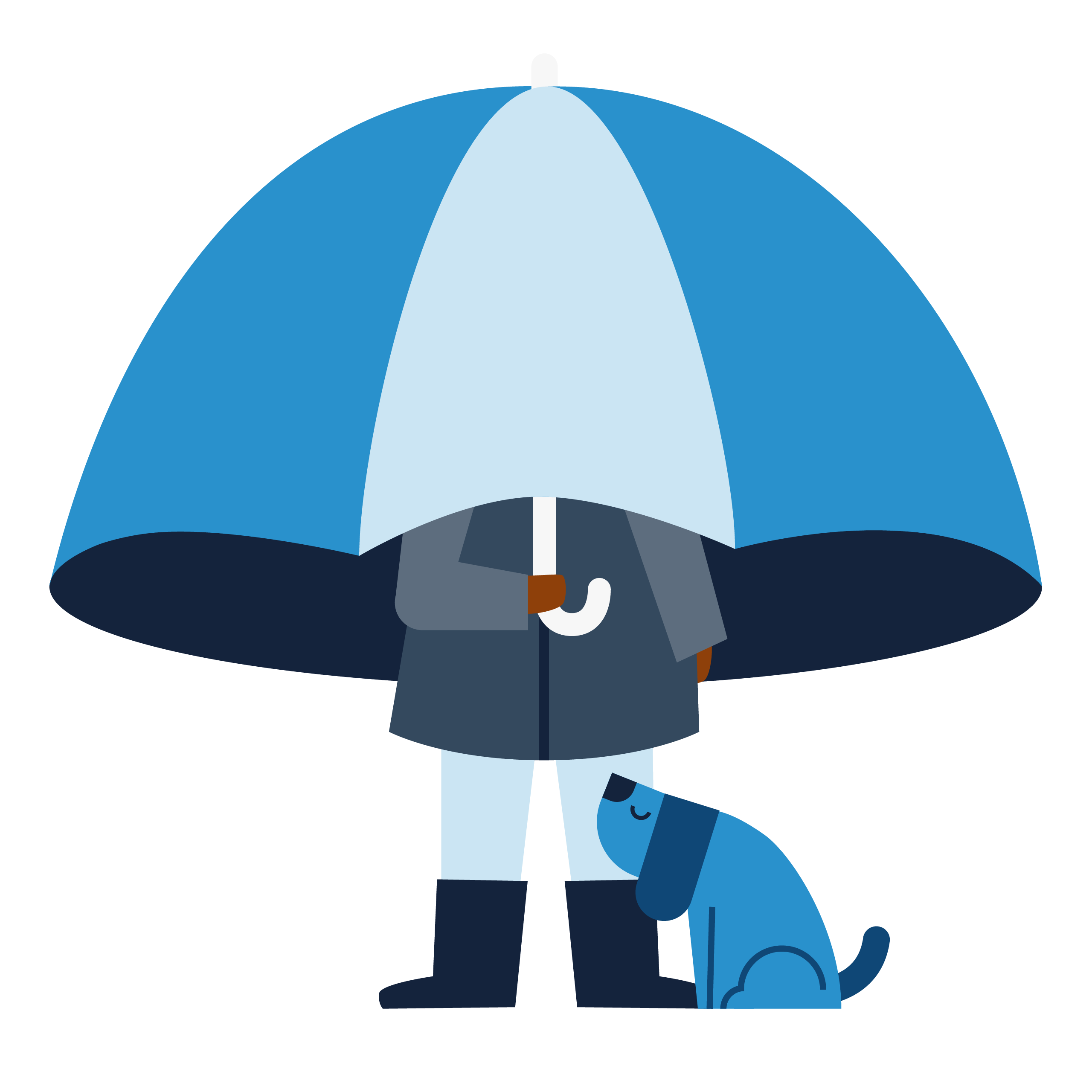 Person with an umbrella and a dog